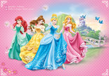 Disney-Prinses-behang-L