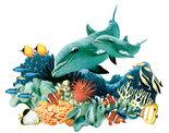Dolfijn-met-Koraal