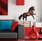 Muursticker-Paard-(bruin)