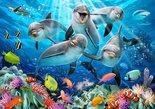 Dolfijnen-familie-behang-XXXL
