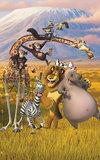 Madagascar Behangposter_