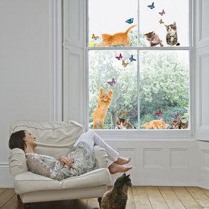 Raamsticker Kitten & Vlinders