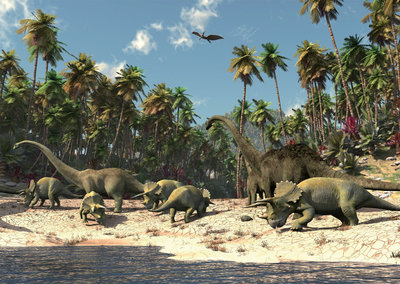 Dinosaurus behang XXXL