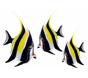 Maanvisjes (set van 3)