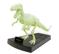 Glow in the Dark Skelet Bouwpakket T-Rex